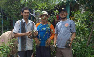 Pemuda Muhammadiyah Deket Bagikan 2000 Bibit Pohon dan 10 Kambing